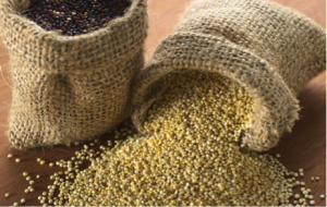 Whole grains are part of healthy well-rounded diet
