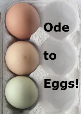 egg ode
