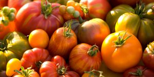 heirloom_tomato
