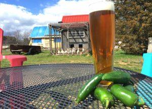 Spicy-at-Throwback-Brewery-at-Hobbs-Farm-1024x729