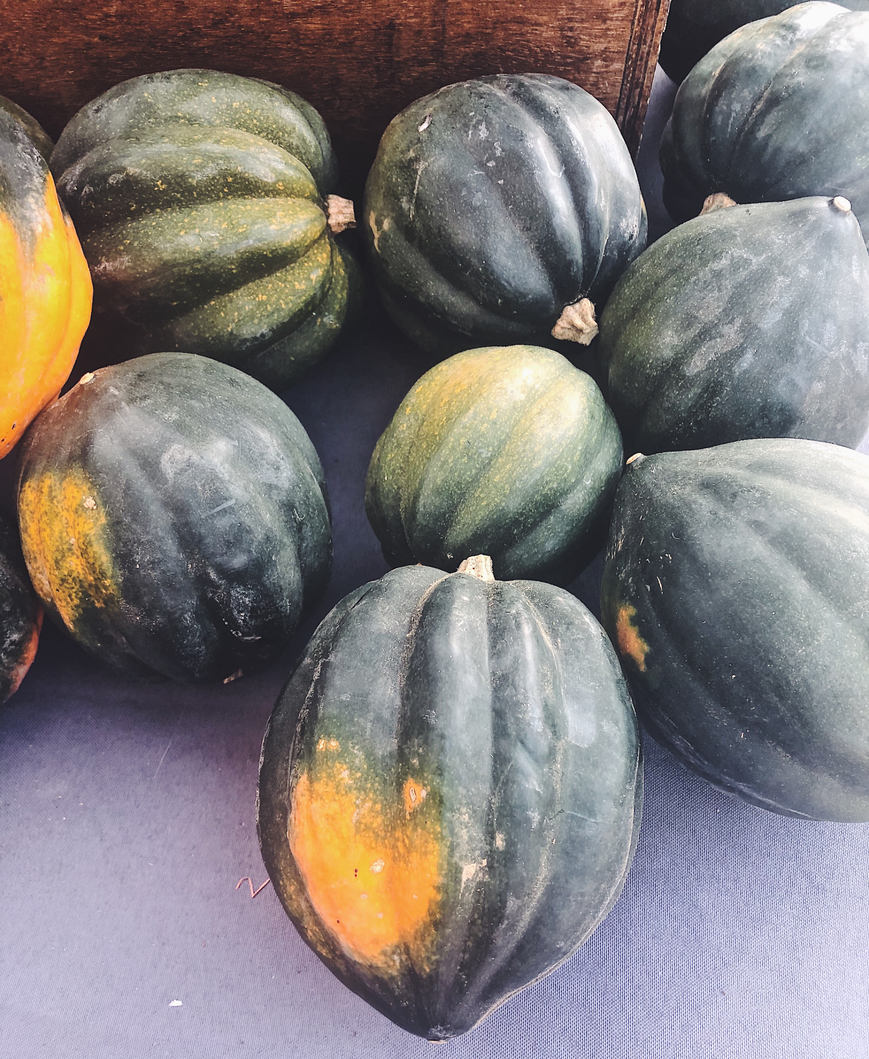 How To Cook Acorn Squash Seacoast Eat Local
